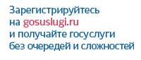 «Государственные услуги»